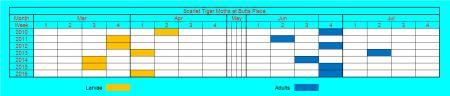 stm graph1